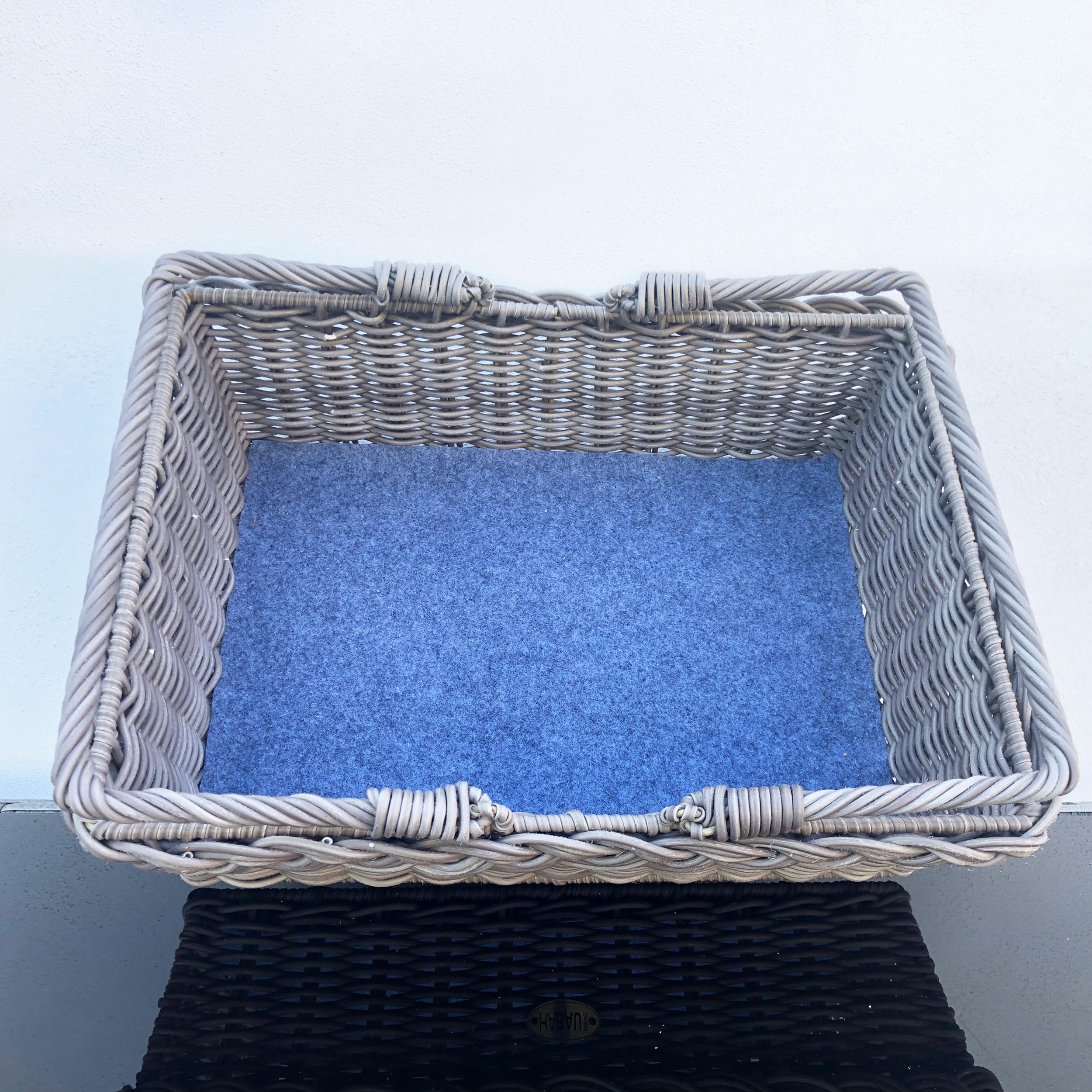 HABAU Korbtablett aus Polyethylen mit herausnehmbarem Filzboden - 3171