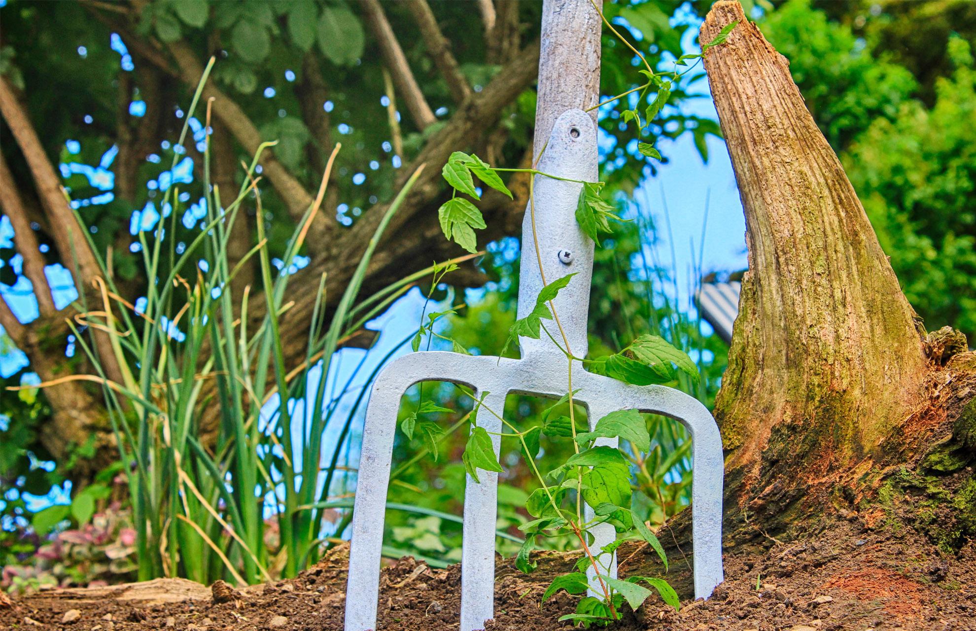 Garten schon reif für den Sommer? Entdecken Sie tolle Produkte von Homalis für jede Jahreszeit